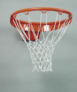 064013-Basketballring064013.jpg